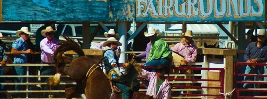 At 2nd Annual Sonoita Memorial Day Rodeo