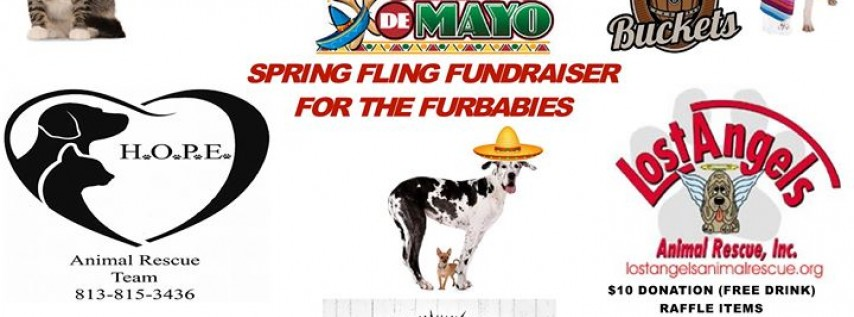Cinco De Mayo Fundraiser for the Furbabies