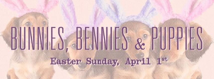 Easter Pet Adoption Brunch in Del Mar