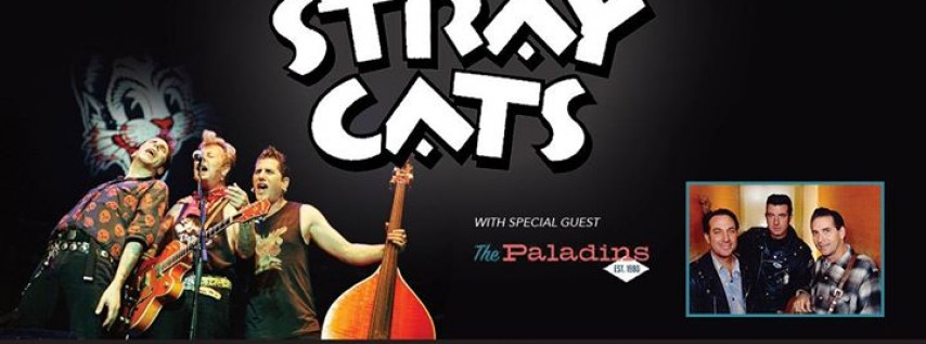 Stray Cats / The Paladins