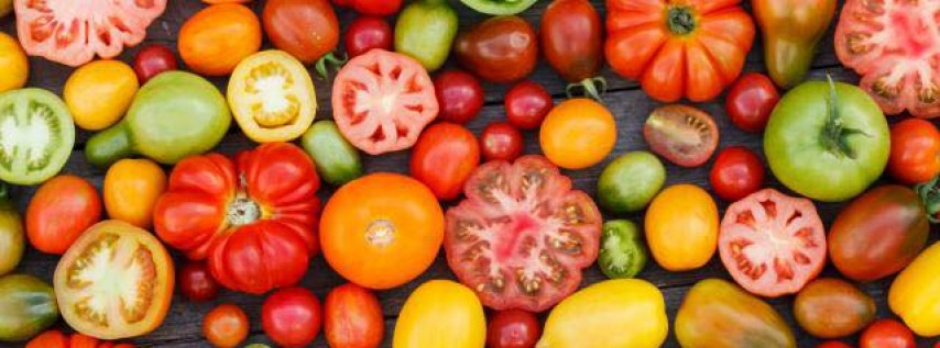 The Grainger County Tomato Festival