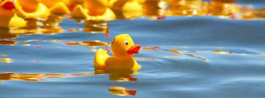 5th Annual Duck Race