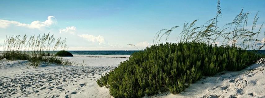 Marineland Beach Walk