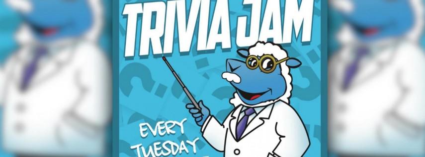 Trivia Jam at The Hammered Lamb!