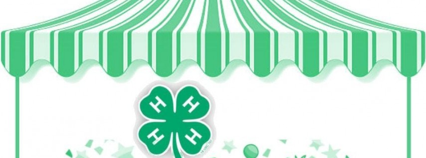 Pinellas 4-H Carnival at Farm City Day