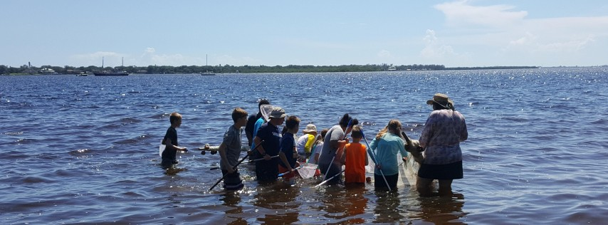 Manatee Marine Explorers Day Camp