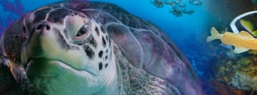 Behind The Scenes Naturalist Tour of The Florida Aquarium