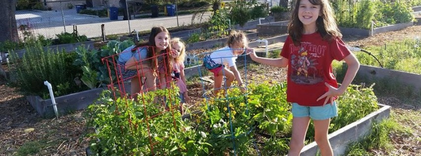 Clearwater Community Gardens 4th Annual Summer Brunch