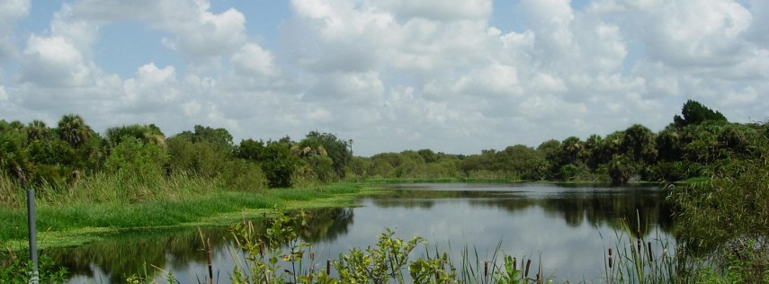 EcoWalk: Florida's Fabulous Plant Heritage at Curry Creek Preserve East