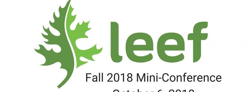 LEEF Mini-Conference 2018