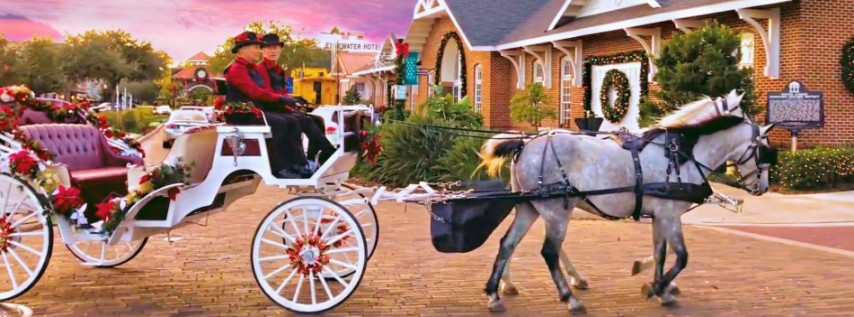 Horse Drawn Carriage Tours 2019