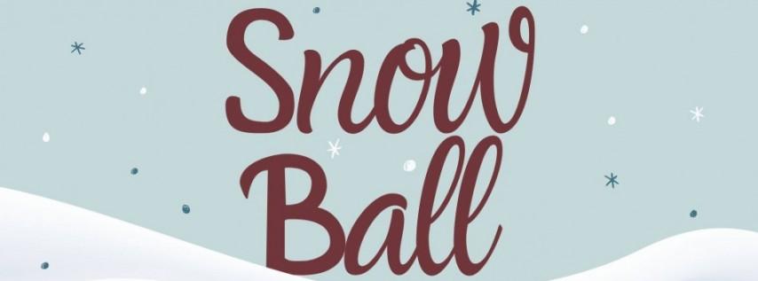 Snow Ball 2020 at Wall St Plaza
