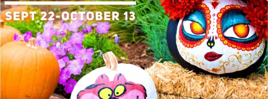 Fall Fun Days!