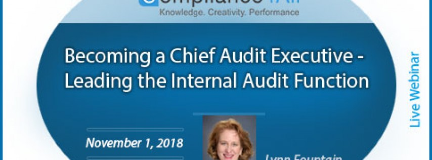 Audit Executive Leading the Internal Audit Function