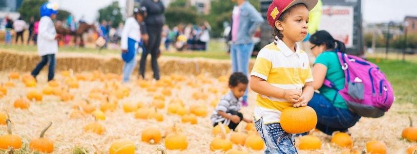 Harbor Harvest Fall Children's Festival