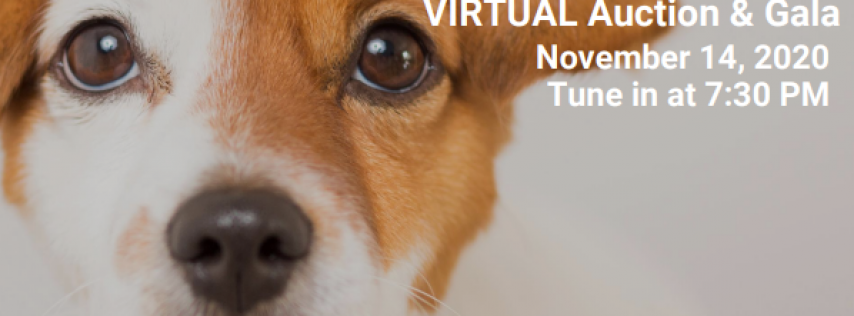 Annual Canines, Cats & Cabernet Virtual Auction & Gala