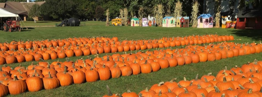 Fall Fun & Pumpkin Patch at Tradition