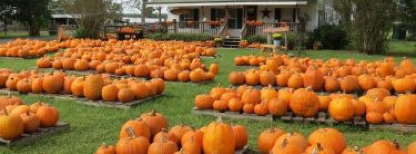 Family Fun Fest Day at Connner's A-Maize-Ing Acres