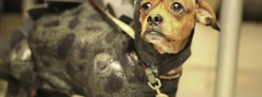 Bark or Treat Canine Cruise