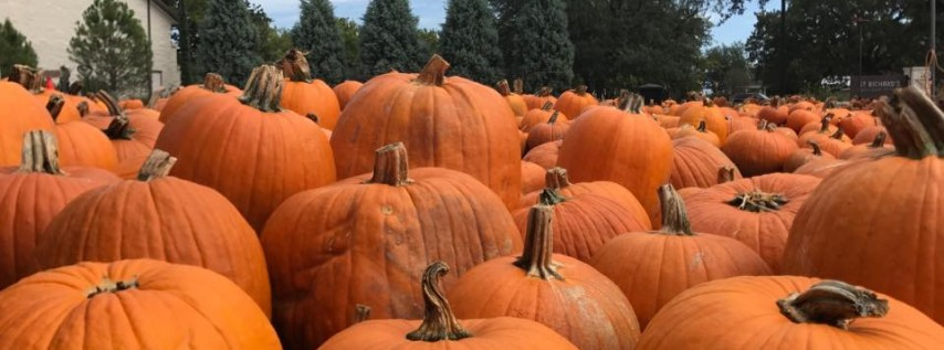 The Great Pumpkin Festival
