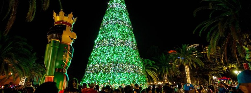 Christmas at Lake Eola Annual Tree Lighting Celebration