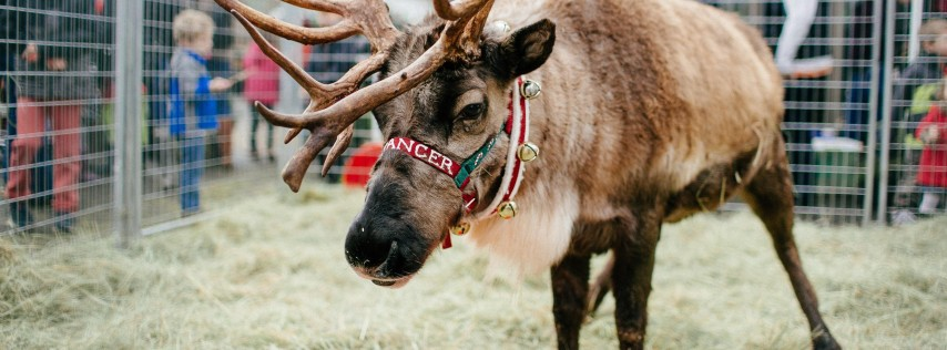 Reindeer Magic Returns to Dennis' 7 Dees Lake Oswego