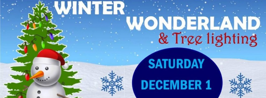 Apopka Winter Wonderland & Tree Lighting, Orlando FL - Dec 1, 2018 ...