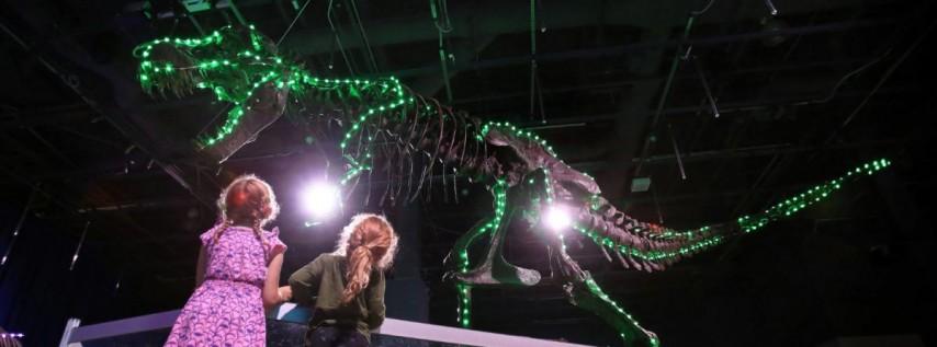 Dinos In Lights Festive Show