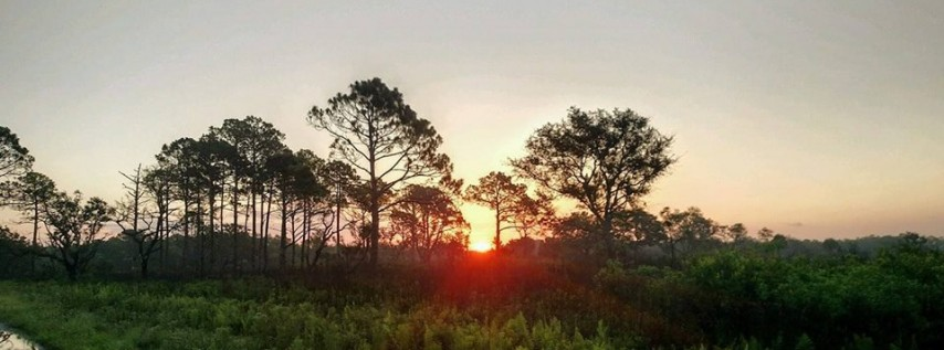 New Years Eve Night Hike, Bradenton & Sarasota FL - Dec 31 ...