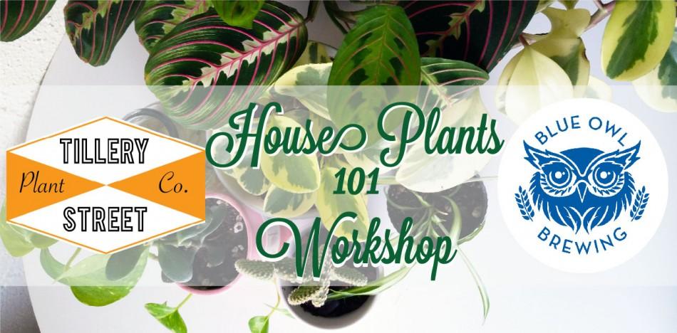 House Plants 101 Workshop