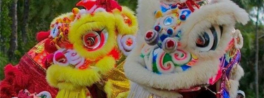 The 15th SWFL AsiaFest 'Year of the Boar' Celebration