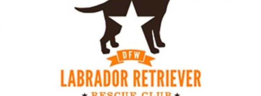 2019 DFW Lab Rescue Volunteer Appreciation Party