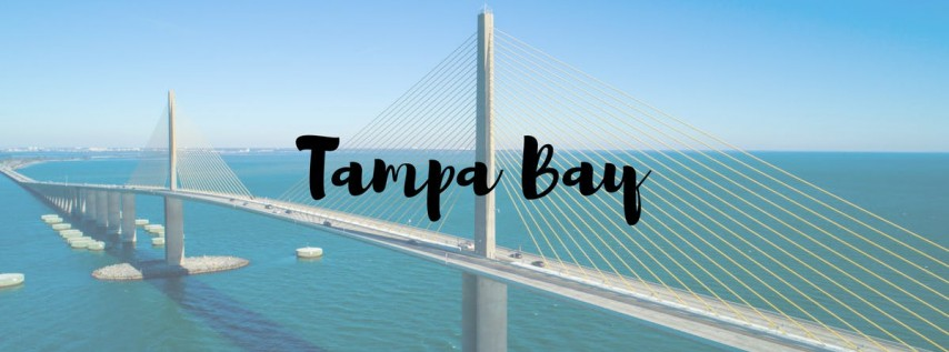 Introduction to  Case Management Training (Tampa Bay )