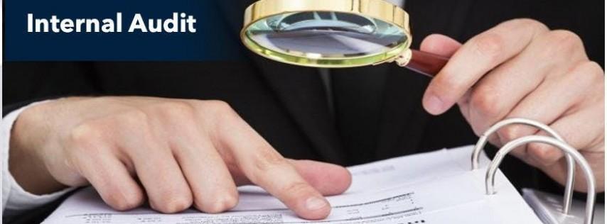 Internal Audit Basic Training - Miami - Airport - Yellow Book & CPA CPE