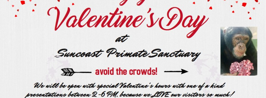 Celebrate Valentine's at Suncoast Primate Sanctuary! 10AM-6 PM