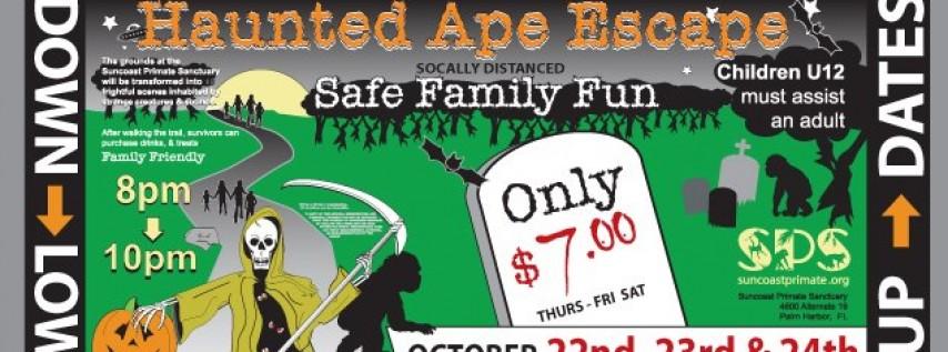 Haunted Ape Escape