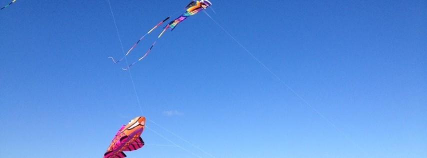 OBX Stunt Kite Festival