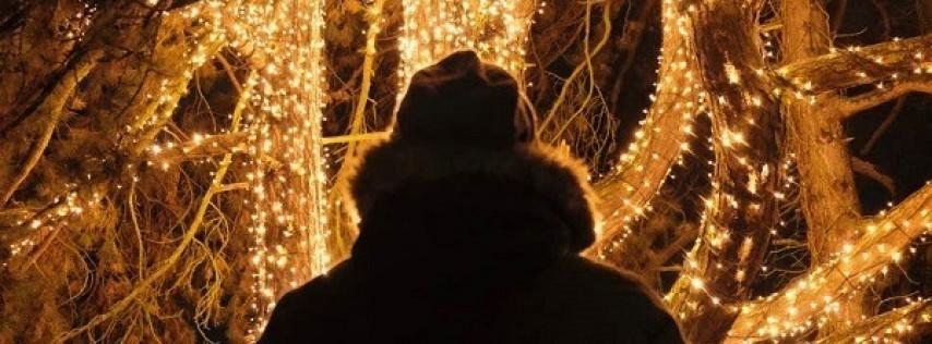 Urban Holiday Lights Hike