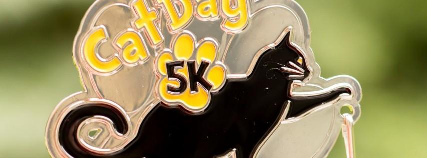 Now Only $10 Cat Day 5K & 10K - Fayetteville