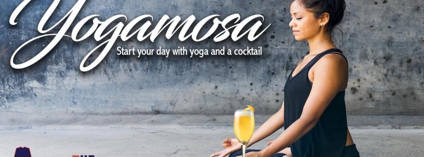 Yogamosa Tampa