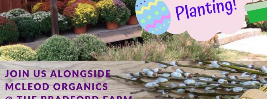 Easter Egg Hunt & Flower Pot Planting @ The Bradford Store