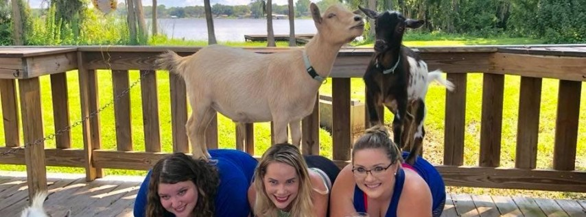 Goat Yoga Tampa plus free drink!
