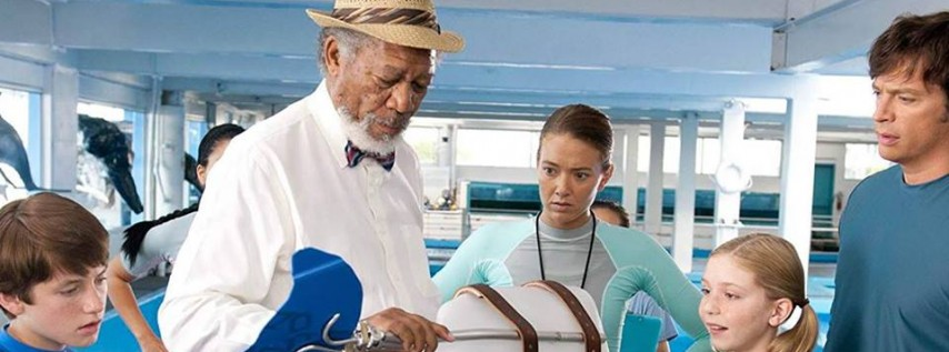 Family Favorites: Dolphin Tale (2011)