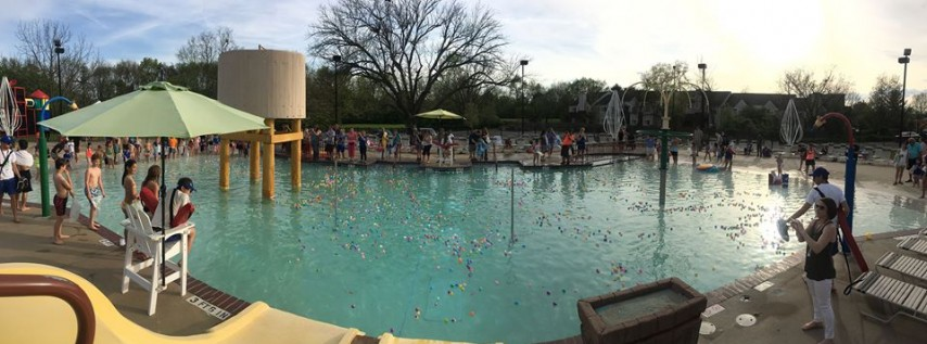 Annual Easter Egg Dive