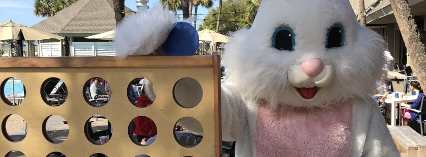 Brunch with the Easter Bunny. Meet & Greet Bunnies, Chicks, Gators, & More!
