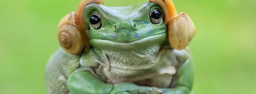Tofu Frog Leg Fridays