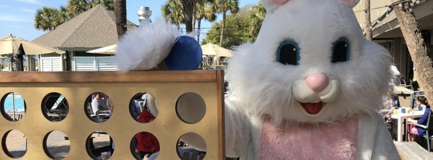 Brunch with the Easter Bunny. Meet & Greet Bunnies, Chicks, Gators, & More!...