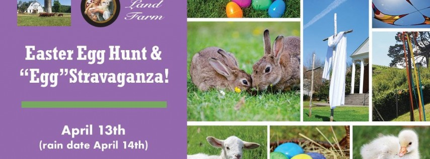 Mary's Land Farm Easter Egg Hunt &