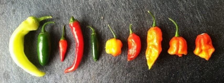 Cinco de Mayo Hot Pepper Eating Contest