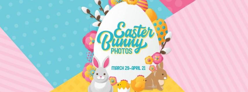 Bunnyville Easter Photos